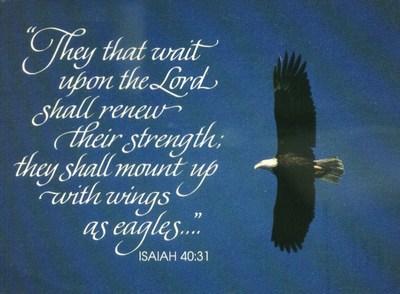 Eagle Isaiah 40v31 KJV
